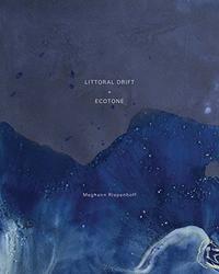 Cotton, Charlotte: Littoral Drift + Ecotone.