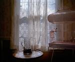 Aaron Blum: Sweet Tea , 2010