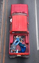 Alejandro Cartagena: Carpoolers #15