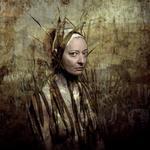 Bear Kirkpatrick: Carole, 2013