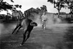 Christopher R. Harris: Cajun Breaking a Horse, 1974