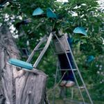Jane Alden Stevens: Bags for Apples, Early Summer, Aomori Prefecture