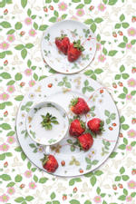 JP Terlizzi: Wedgwood Wild Strawberry with Strawberry, 2019