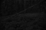 Ken Rosenthal: Oblique