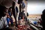 Michele Palazzi & Alessandro Penso: Migrants Preparing the Goat for Dinner, Basilicata, Italy