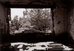 Patti Levey: Large Window, 1999