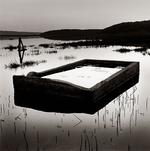 Peter Merts: Flooded Cattle Trough -- Rush Creek Marsh, California, 1999