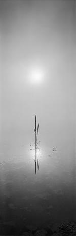 SOLAR Group Exhibition: David H. Gibson, Sunrise, August 28, 2008, 7:40 AM, Eagle Nest Lake, NM