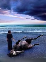 Tom Chambers: Sea Horse, 2005
