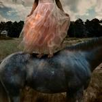 Tom Chambers: Prom Gown #2, 2005