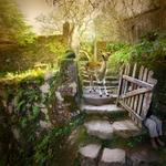 Tom Chambers: Garden Gate