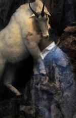Traer Scott: Mountain Goat